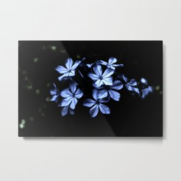 Under The Blue Moon Metal Print