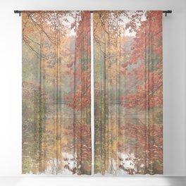 Autumn 17 Sheer Curtain