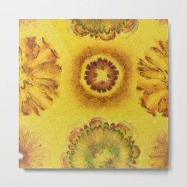 Subitems Disrobed Flowers  ID:16165-082305-64220 Metal Print