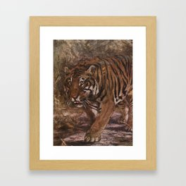 Vintage Tiger Painting (1909) Framed Art Print