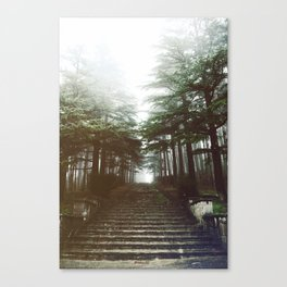 I will follow you into the dark. Canvas Print