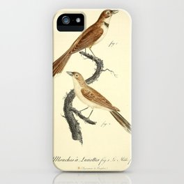 Gobe Mouches a Lunettes (Fr)2 iPhone Case