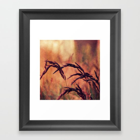 summerlight Framed Art Print