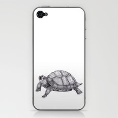 Turtle Pattern iPhone & iPod Skin