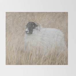 Moorland sheep in the snow Throw Blanket