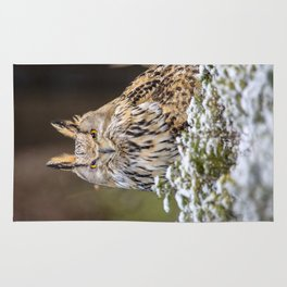 Western Siberian Owl Rug