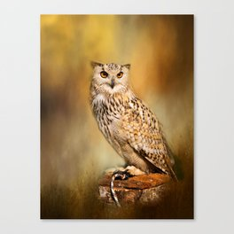 Great Horned Owl Wildlife Photography Canvas Print