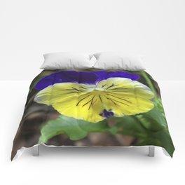 Vivid Viola Comforters