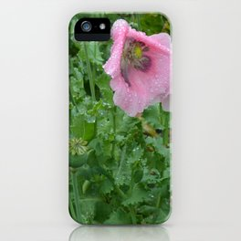 Poppies in rain iPhone Case