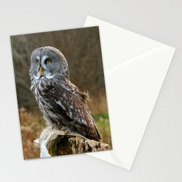 Waiting for night to fall Stationery Cards