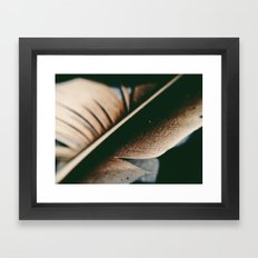 lost feather Framed Art Print