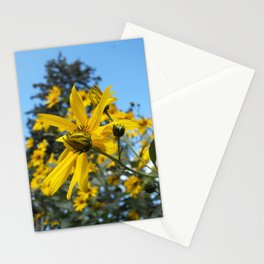 Sunflowers and the Pine Tree Stationery Cards