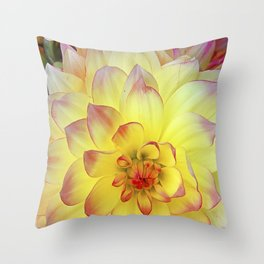 Lizzy Throw Pillow