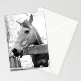 Cheeky Horse Stationery Cards