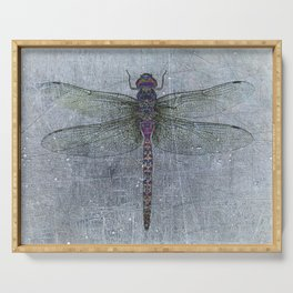 Dragonfly on blue stone and metal background Serving Tray