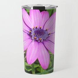 Single Pink African Daisy Against Green Foliage Travel Mug