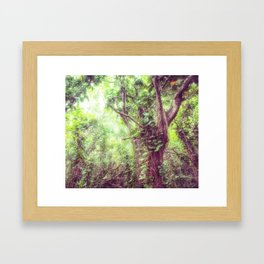 Dreamy Jungle Canopy Framed Art Print