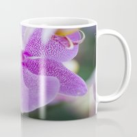 orchid Mugs featuring Orchid by Don Hooper