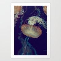 La méduse solitaire (3) Art Print