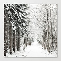 canopy of snowy branches Canvas Print