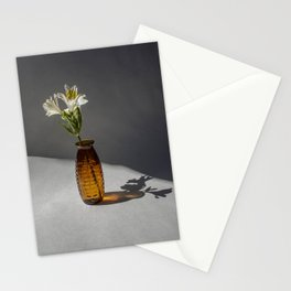 Shadow and Flower #2 Stationery Cards