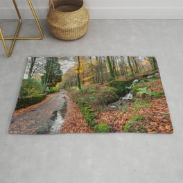 Autumn Forest River Rug