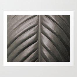 Peace Lily Leaf B/W 2 Art Print