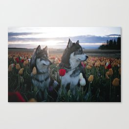 Floral Brothers Canvas Print