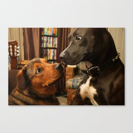 Lola and Boogy  Canvas Print