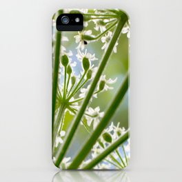 Delicate cow parsley iPhone Case
