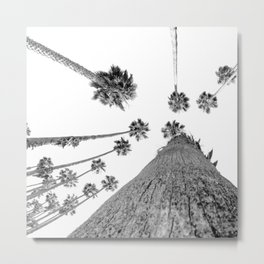 {2 of 2} Hug a Palm Tree // Tropical Summer Black and White Sky Art Print Metal Print