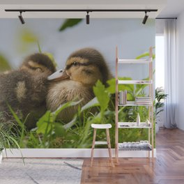 Siblings Wall Mural