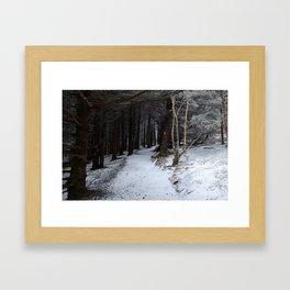 Winter on the AT Framed Art Print