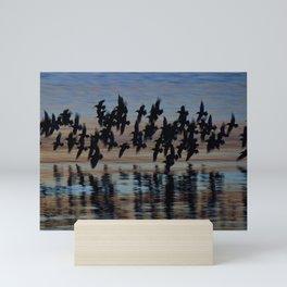 Sandpipers at Dusk Mini Art Print