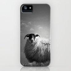 le fluff iPhone (5, 5s) Slim Case