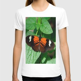 Perched Doris Longwing Butterfly T-shirt
