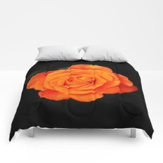 Romantic Rose Orange Comforters