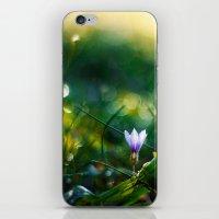 celestial iPhone & iPod Skins featuring Celestial by João Pedro de Almeida