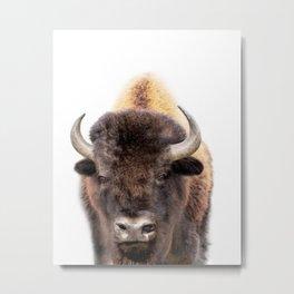 Bison Art Print by Zouzounio Art Metal Print