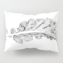 Kale Pillow Sham