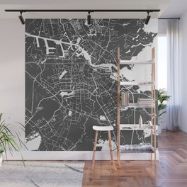 Amsterdam Gray on White Street Map Wall Mural