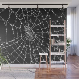 Spider web with dew water drops Wall Mural
