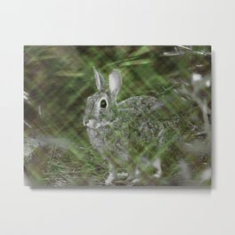 Plaid World - Rabbit Metal Print