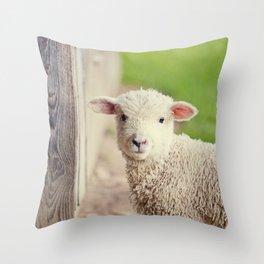 Little Lamb I Throw Pillow