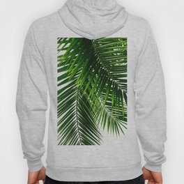 Palm Leaves #3 Hoody