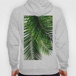 Palm Leaves #3 Hoody