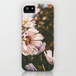 Field of Flowers 13 iPhone Case
