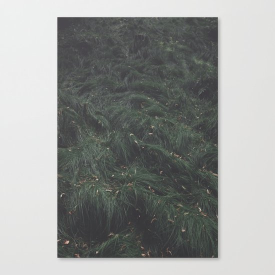Leave(s) - Nature Photography Canvas Print