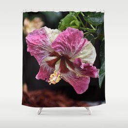 Portrait of a Hibiscus Shower Curtain