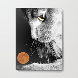 Silver Cat and Moon Metal Print